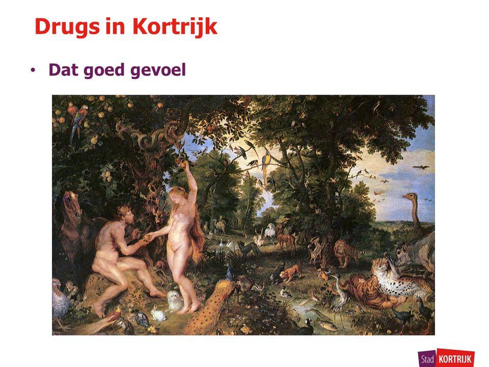 Drugs in Kortrijk • Dat goed gevoel