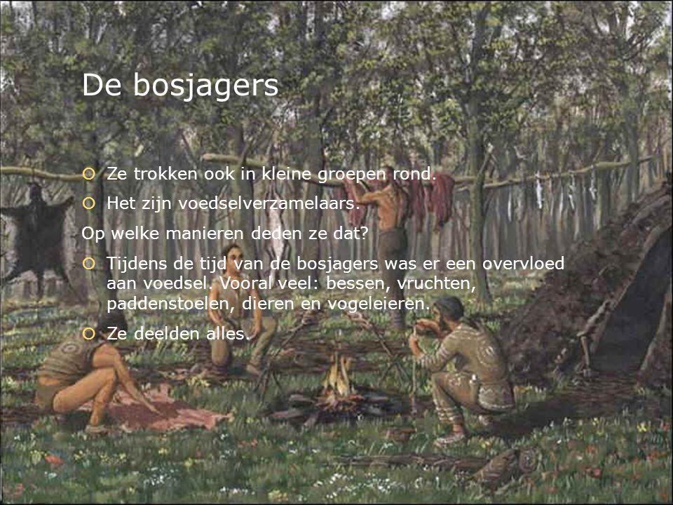 De bosjagers  Ze trokken ook in kleine groepen rond.  Het zijn voedselverzamelaars. Op welke manieren deden ze dat?  Tijdens de tijd van de bosjage