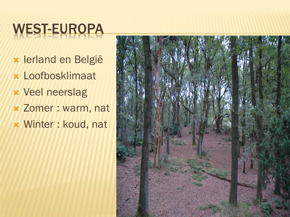  Ierland en België  Loofbosklimaat  Veel neerslag  Zomer : warm, nat  Winter : koud, nat