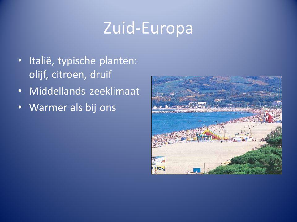 Zuid-Europa • Italië, typische planten: olijf, citroen, druif • Middellands zeeklimaat • Warmer als bij ons