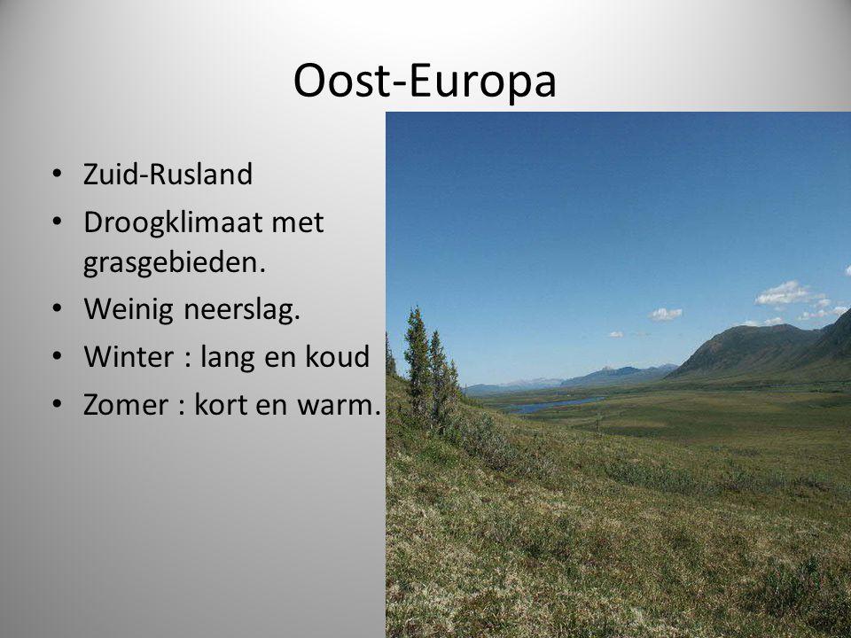 Oost-Europa • Zuid-Rusland • Droogklimaat met grasgebieden.