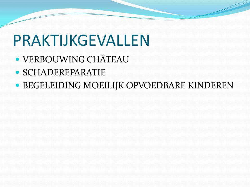 PRAKTIJKGEVALLEN  VERBOUWING CHÂTEAU  SCHADEREPARATIE  BEGELEIDING MOEILIJK OPVOEDBARE KINDEREN