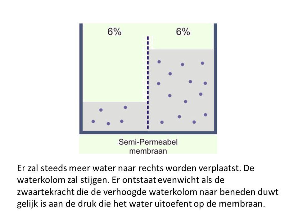 Er zal steeds meer water naar rechts worden verplaatst. De waterkolom zal stijgen. Er ontstaat evenwicht als de zwaartekracht die de verhoogde waterko