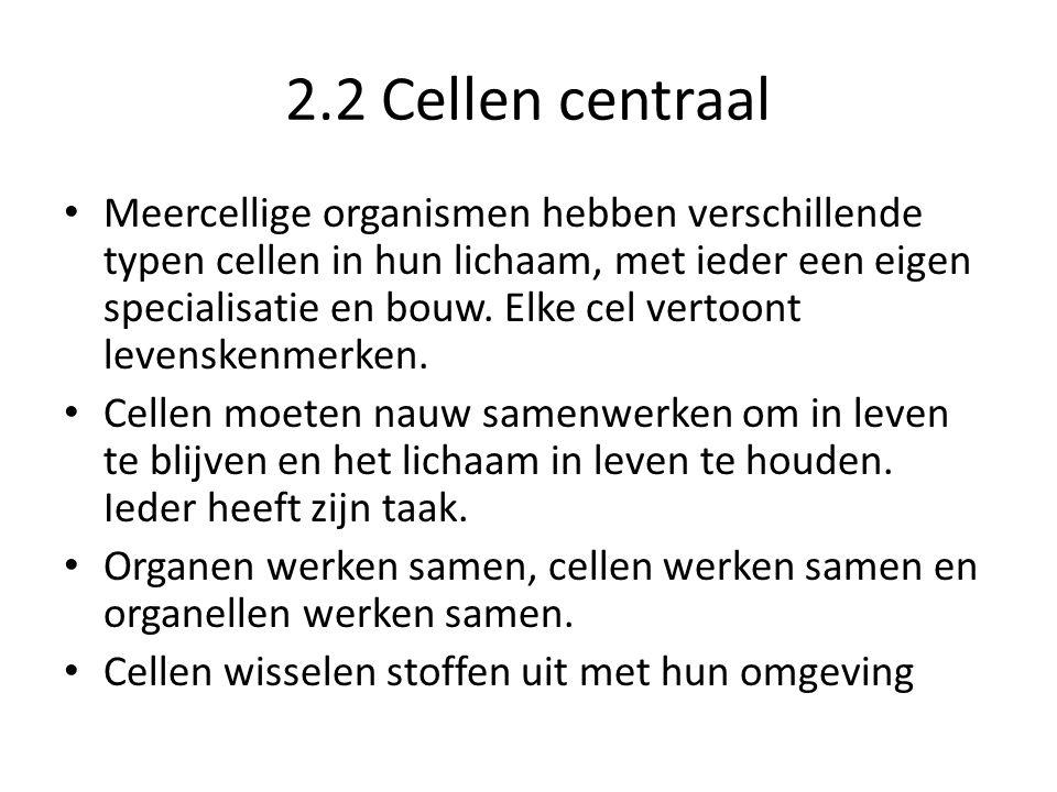 2.2 Cellen centraal • Meercellige organismen hebben verschillende typen cellen in hun lichaam, met ieder een eigen specialisatie en bouw. Elke cel ver