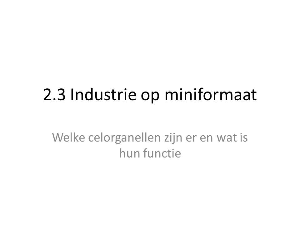 2.3 Industrie op miniformaat Welke celorganellen zijn er en wat is hun functie