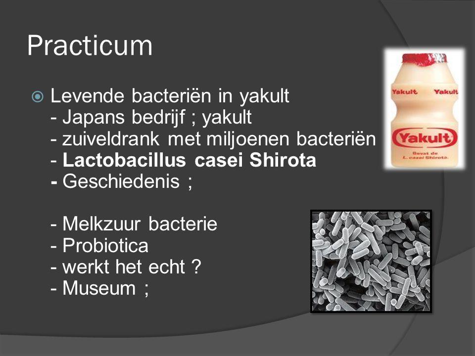Practicum  Levende bacteriën in yakult - Japans bedrijf ; yakult - zuiveldrank met miljoenen bacteriën - Lactobacillus casei Shirota - Geschiedenis ; - Melkzuur bacterie - Probiotica - werkt het echt .