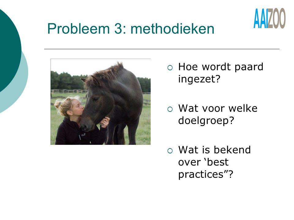 Probleem 3: methodieken  Hoe wordt paard ingezet.