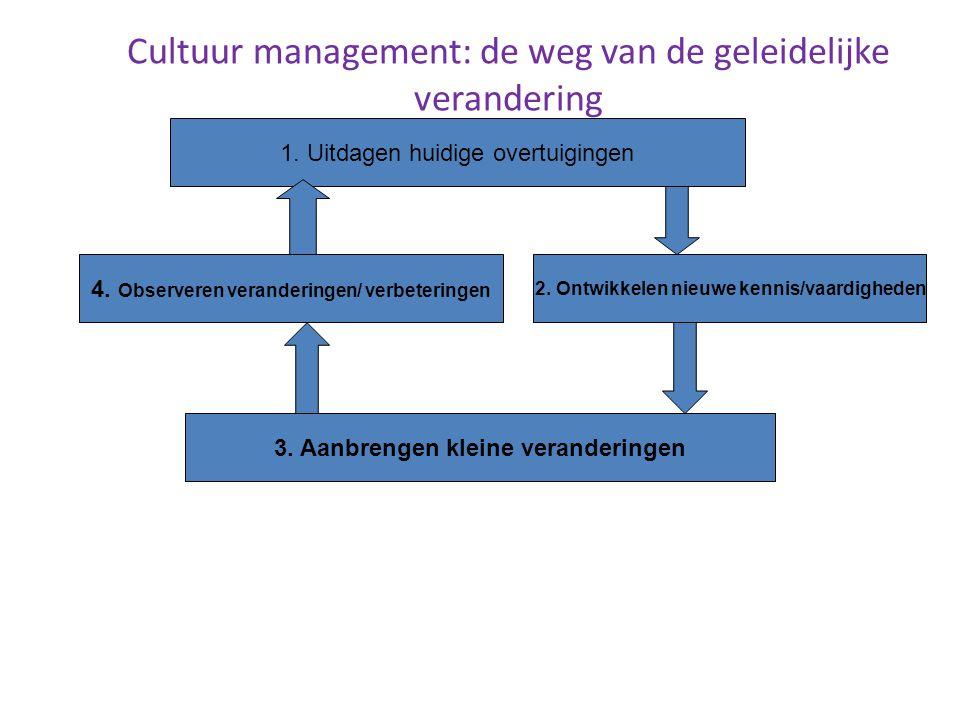Professionalisering van leerkrachten Werner Bosman DPB-Gent 37 Cultuur management: de weg van de geleidelijke verandering 1. Uitdagen huidige overtuig