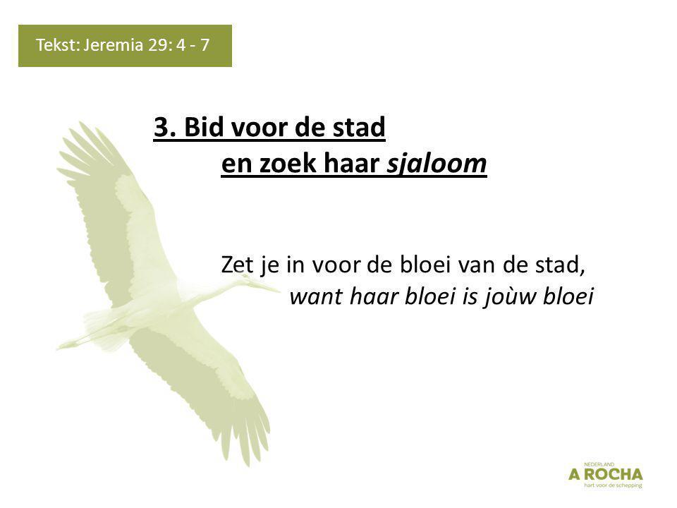 Gezang 131: 7, 8, 9 (GK 38)