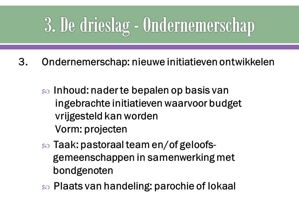 3. Ondernemerschap: nieuwe initiatieven ontwikkelen  Inhoud: nader te bepalen op basis van ingebrachte initiatieven waarvoor budget vrijgesteld kan w