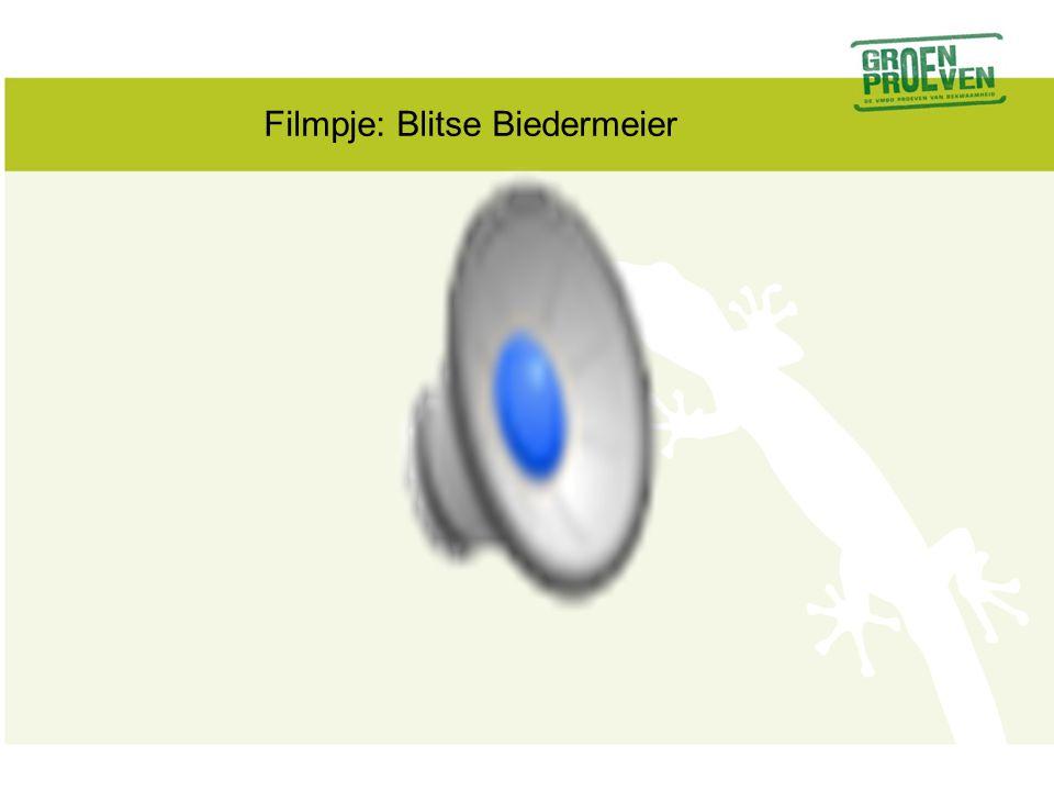 Filmpje: Blitse Biedermeier