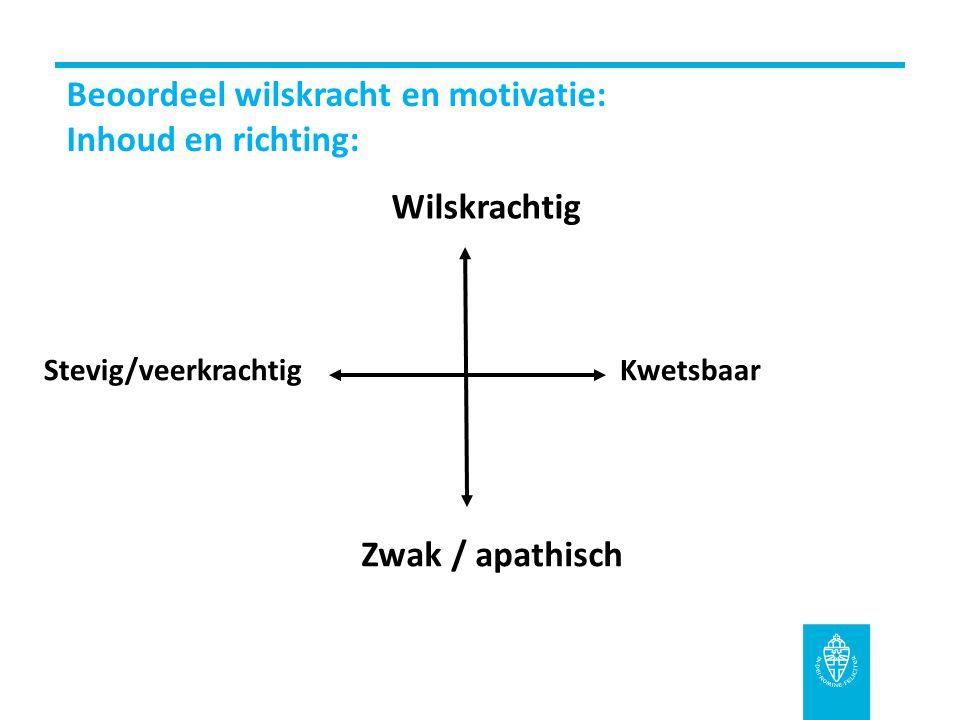 Beoordeel wilskracht en motivatie: Inhoud en richting: Stevig/veerkrachtigKwetsbaar Wilskrachtig Zwak / apathisch