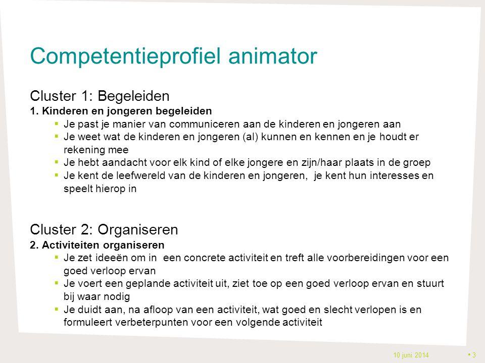 Competentieprofiel animator Cluster 1: Begeleiden 1.