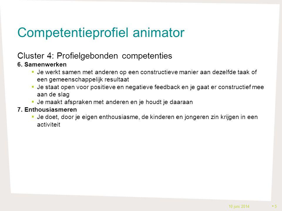 Competentieprofiel animator Cluster 4: Profielgebonden competenties 6.