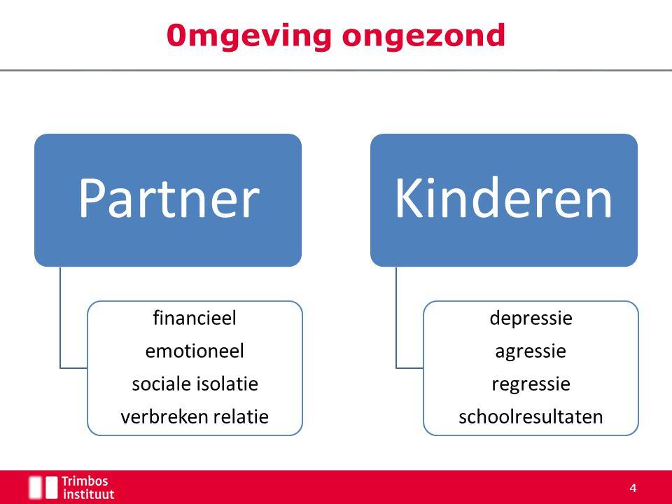 0mgeving ongezond Partner financieel emotioneel sociale isolatie verbreken relatie Kinderen depressie agressie regressie schoolresultaten 4