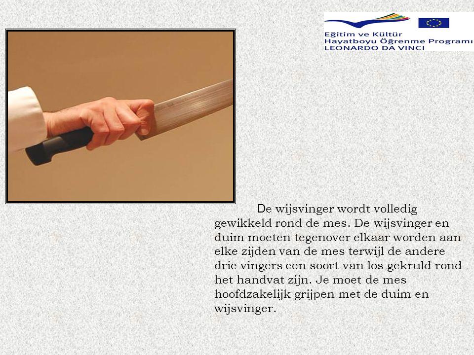 Terwijl je de voedsel houdt met je lege hand, moet je je vingertoppen veilig verstoppen.