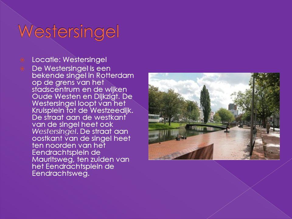 Locatie: Westersingel  De Westersingel is een bekende singel in Rotterdam op de grens van het stadscentrum en de wijken Oude Westen en Dijkzigt. De