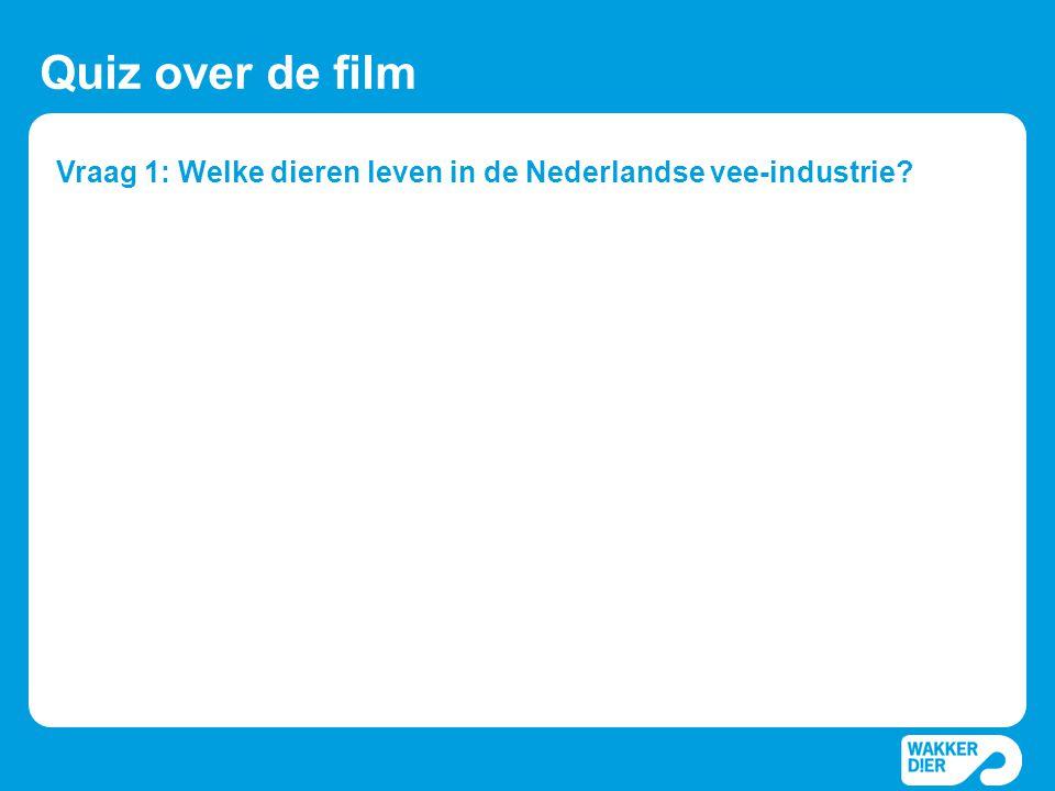 Vraag 1: Welke dieren leven in de Nederlandse vee-industrie.