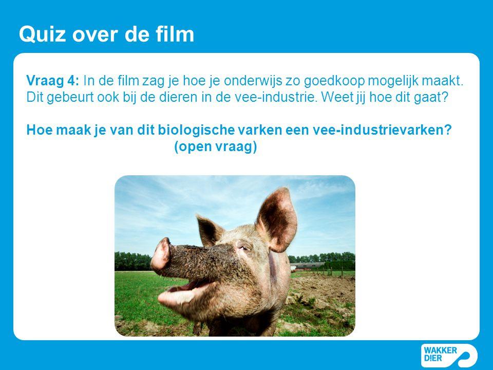 Vraag 4: In de film zag je hoe je onderwijs zo goedkoop mogelijk maakt. Dit gebeurt ook bij de dieren in de vee-industrie. Weet jij hoe dit gaat? Hoe