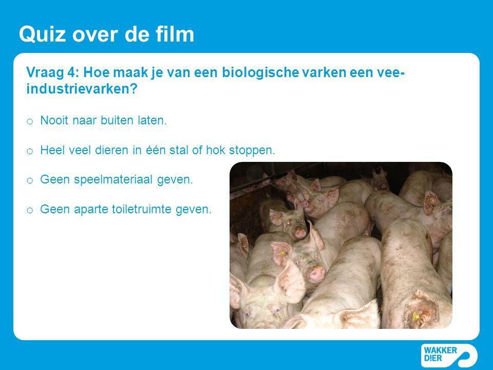 Vraag 4: Hoe maak je van een biologische varken een vee- industrievarken? Quiz over de film o Nooit naar buiten laten. o Heel veel dieren in één stal