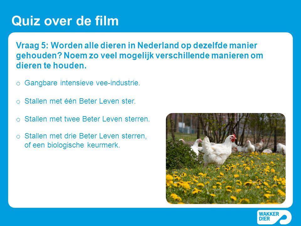 Vraag 5: Worden alle dieren in Nederland op dezelfde manier gehouden? Noem zo veel mogelijk verschillende manieren om dieren te houden. Quiz over de f