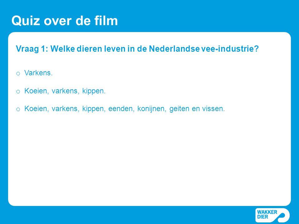Vraag 1: Welke dieren leven in de Nederlandse vee-industrie? Quiz over de film o Varkens. o Koeien, varkens, kippen. o Koeien, varkens, kippen, eenden