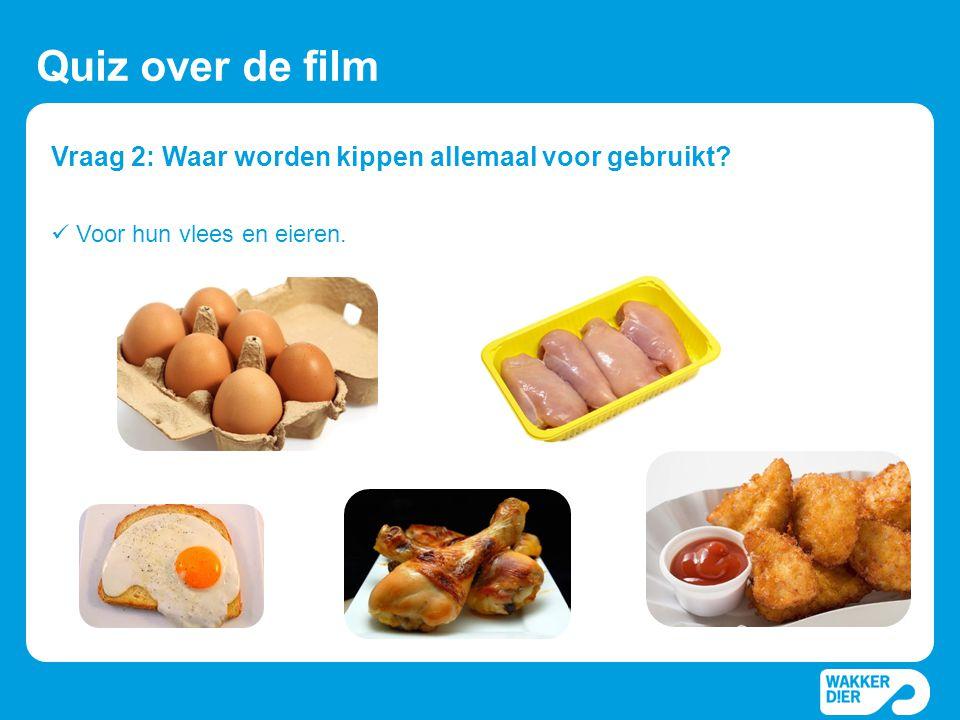 Vraag 2: Waar worden kippen allemaal voor gebruikt? Quiz over de film  Voor hun vlees en eieren.