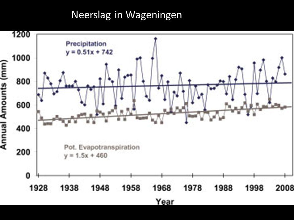 Neerslag in Wageningen
