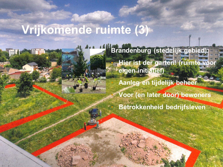 Bureau PAU Plan Advies Uitvoering Vrijkomende ruimte (3) Brandenburg (stedelijk gebied): •Hier ist der garten.