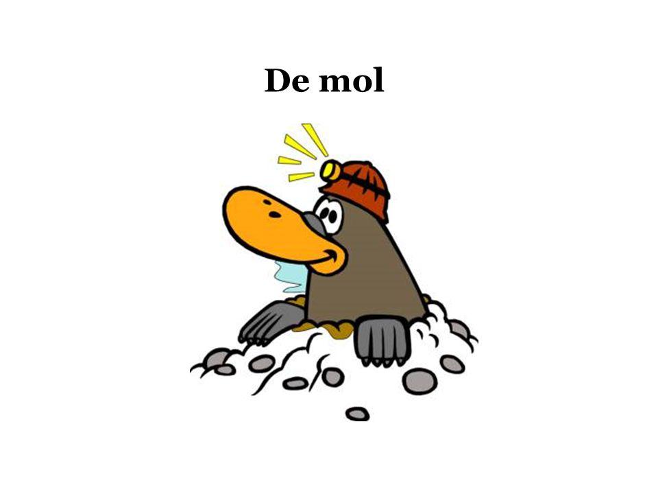 Mol komt van Moles (Lat.) wat 'massa' betekent Mol geeft het verband weer tussen de massa van een stof en het aantal deeltjes 1 mol van stof A bevat evenveel deeltjes als 1 mol van stof B.
