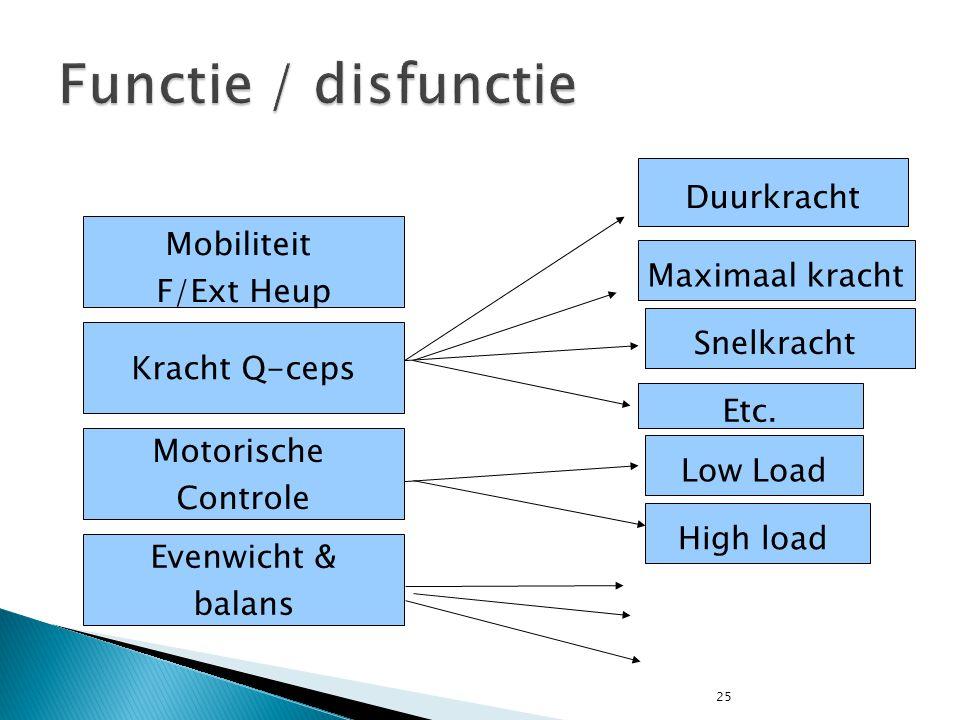 25 Mobiliteit F/Ext Heup Kracht Q-ceps Motorische Controle Evenwicht & balans High load Duurkracht Snelkracht Etc. Maximaal kracht Low Load