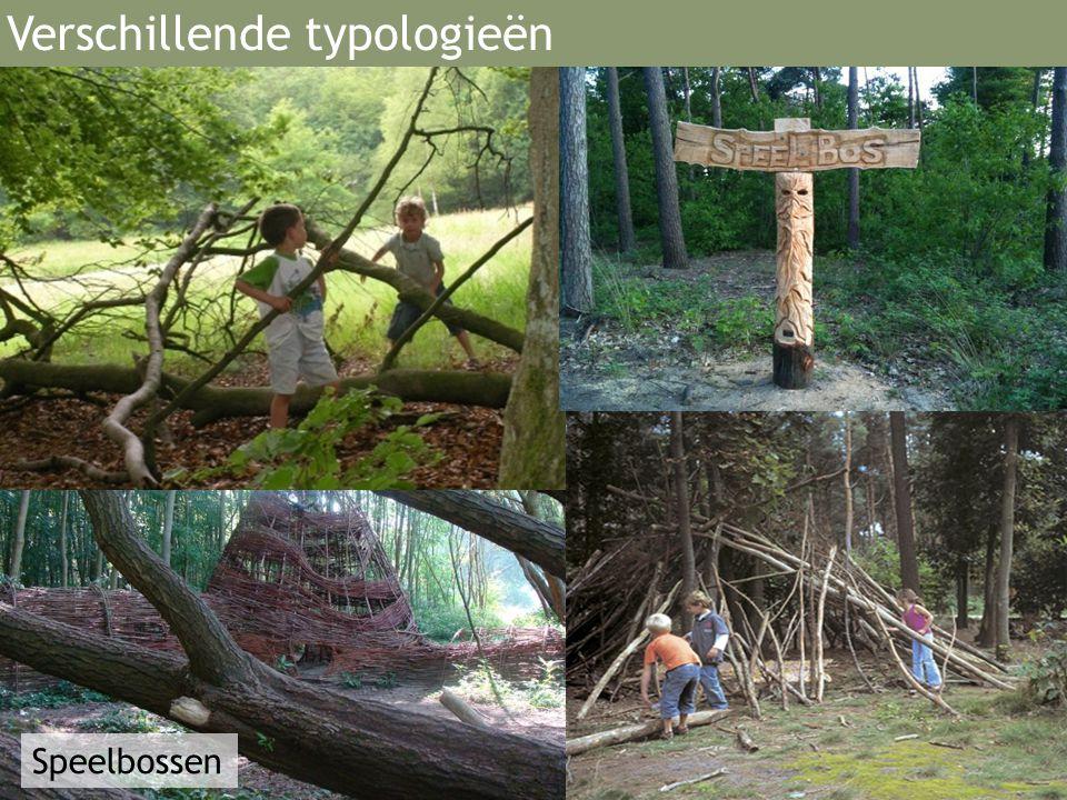 Speelbossen Verschillende typologieën