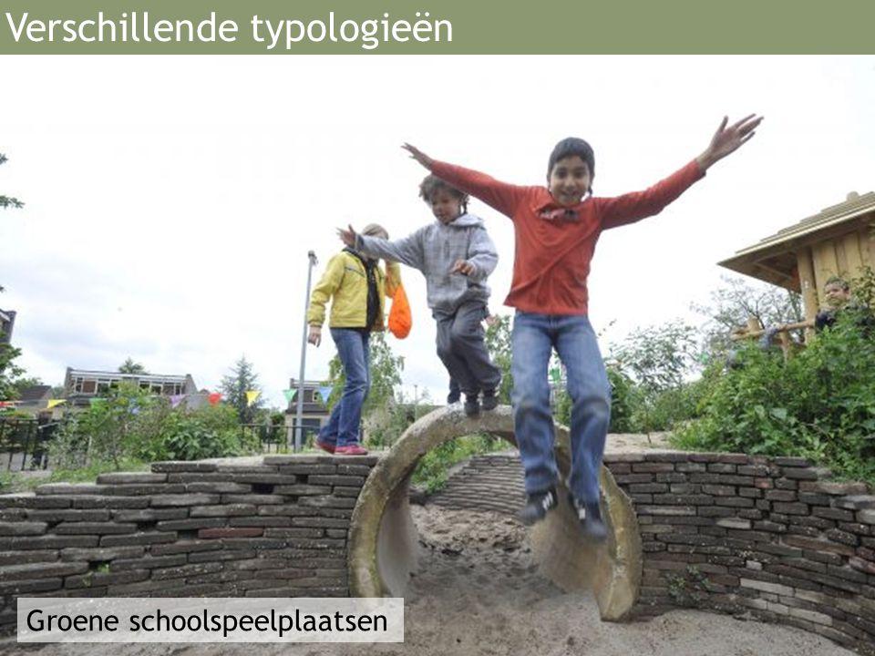 Groene schoolspeelplaatsen Verschillende typologieën