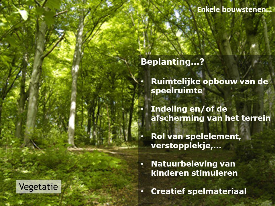 Vegetatie Enkele bouwstenen… Beplanting…? • Ruimtelijke opbouw van de speelruimte • Indeling en/of de afscherming van het terrein • Rol van spelelemen