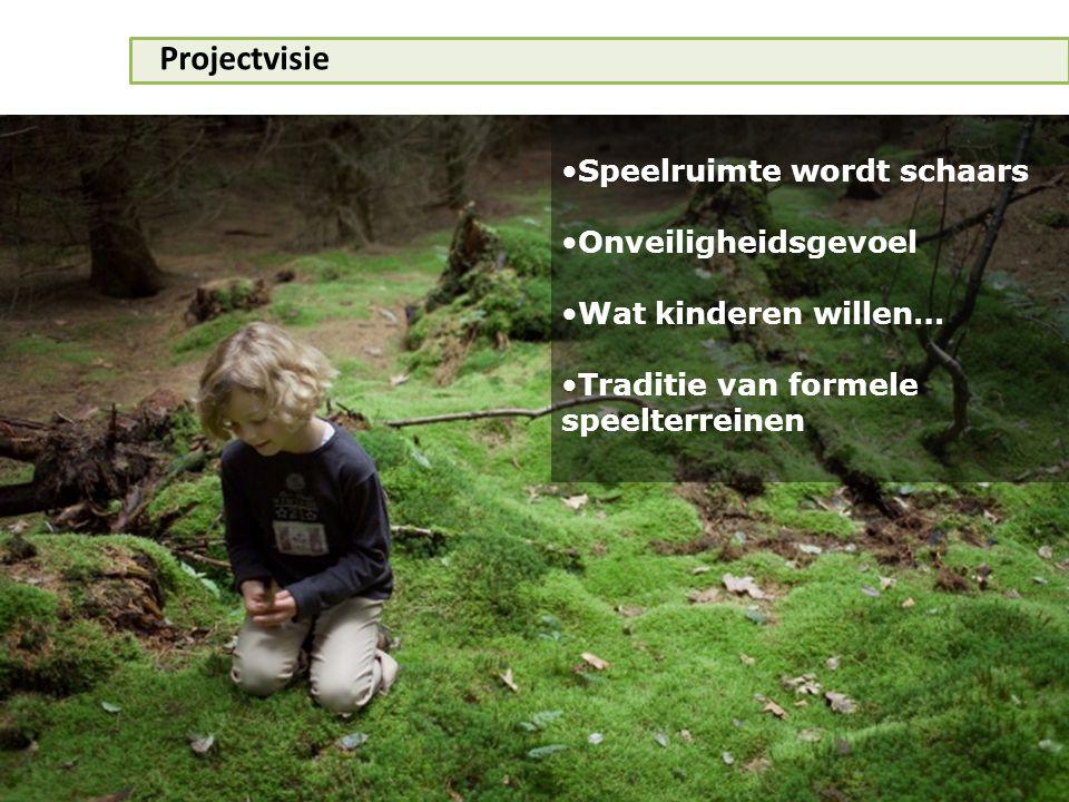 Projectvisie •Speelruimte wordt schaars •Onveiligheidsgevoel •Wat kinderen willen… •Traditie van formele speelterreinen