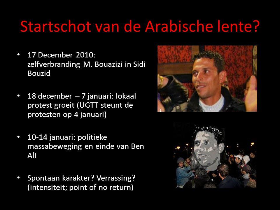Tahrir en de Egyptische revolutie