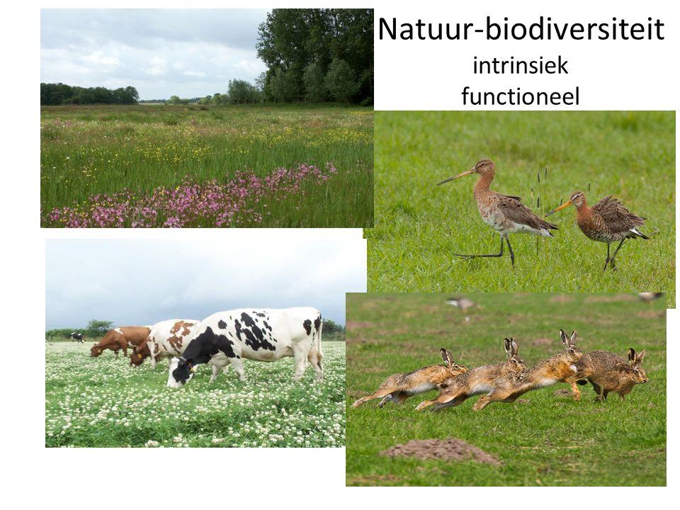 Natuur-biodiversiteit intrinsiek functioneel