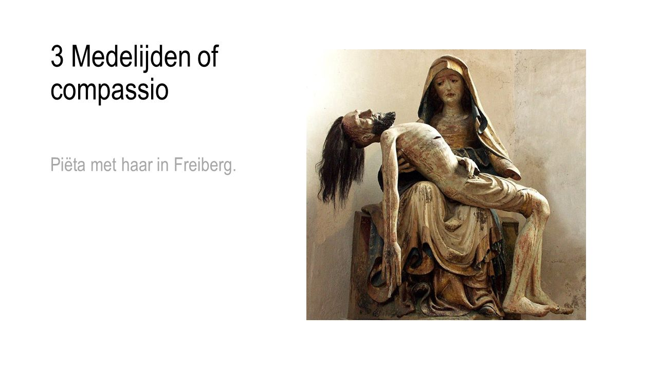 3 Medelijden of compassio Piëta met haar in Freiberg.