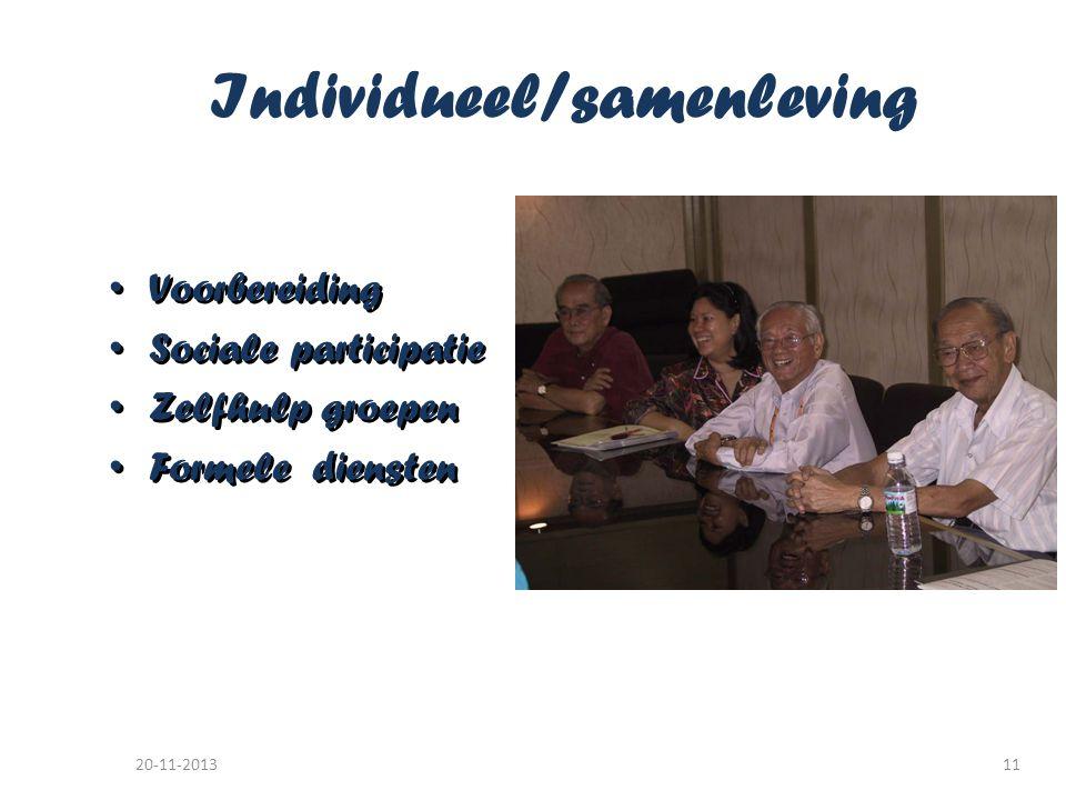 Individueel/samenleving • Voorbereiding • Sociale participatie • Zelfhulp groepen • Formele diensten • Voorbereiding • Sociale participatie • Zelfhulp groepen • Formele diensten 20-11-201311
