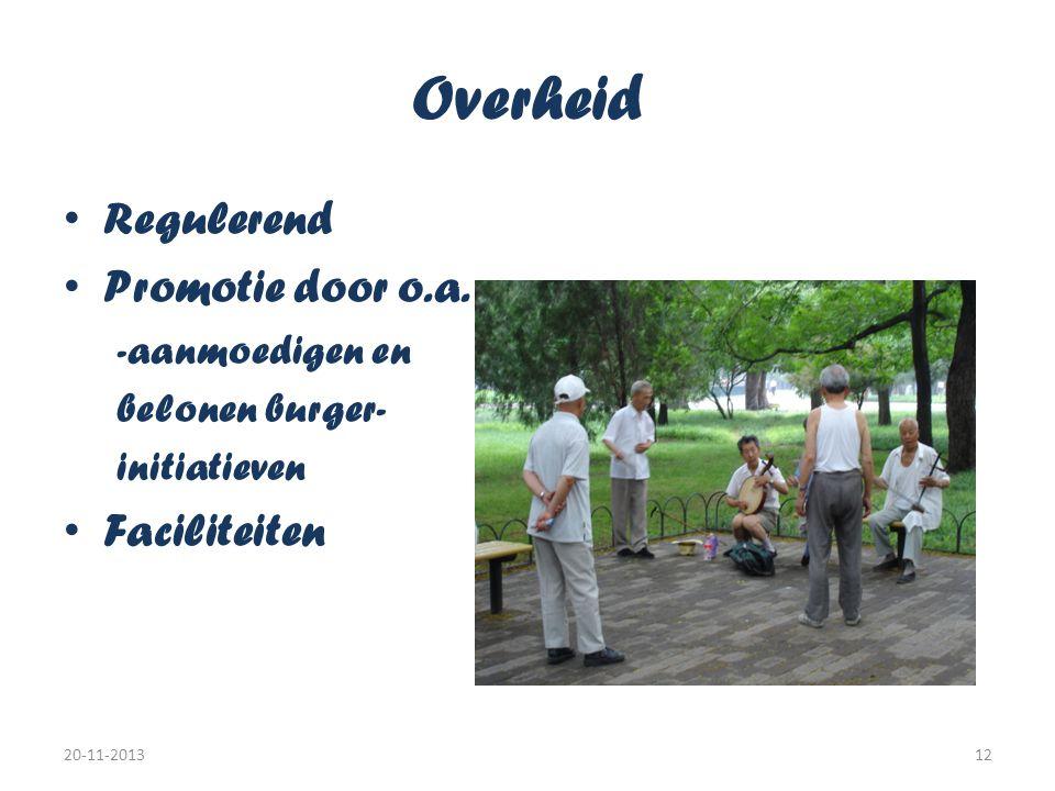 Overheid • Regulerend • Promotie door o.a. -aanmoedigen en belonen burger- initiatieven • Faciliteiten 20-11-201312