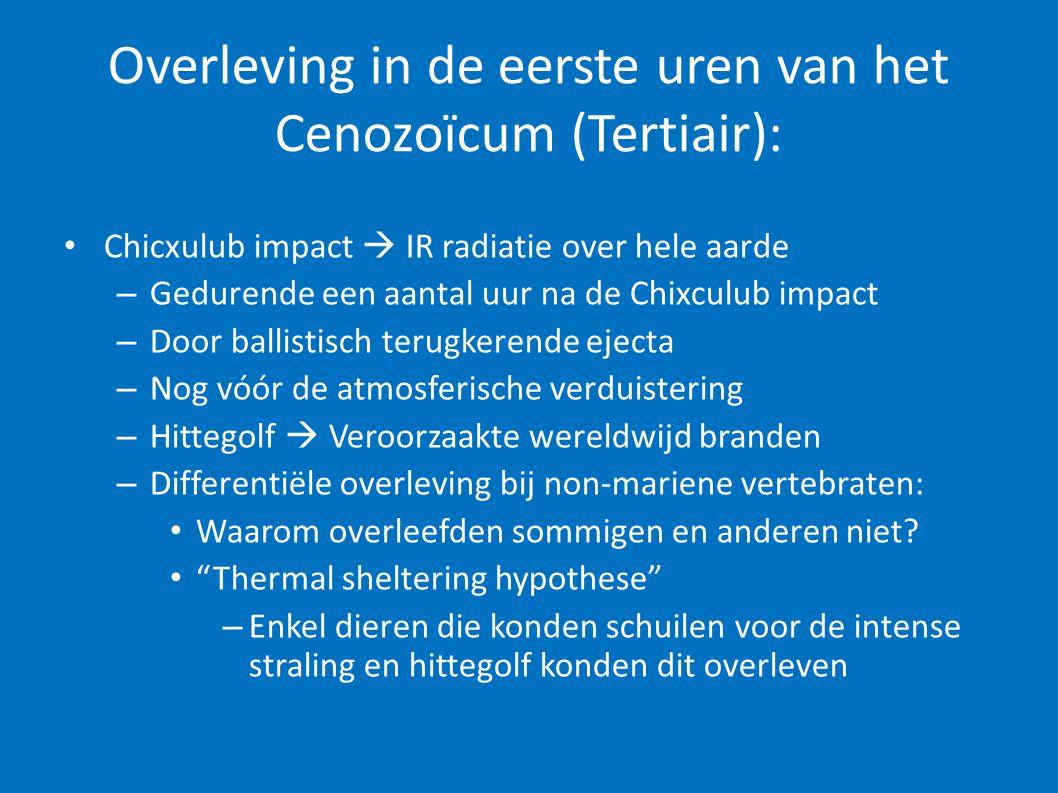 Overleving in de eerste uren van het Cenozoïcum (Tertiair): • Chicxulub impact  IR radiatie over hele aarde – Gedurende een aantal uur na de Chixculu