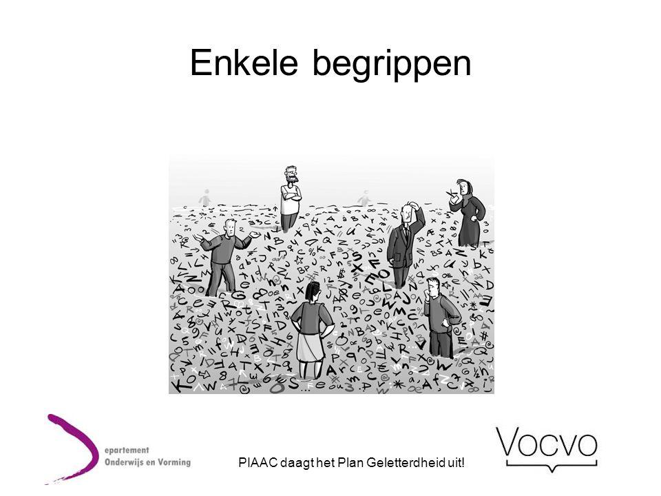 Stelling van Rein en Carine De PIAAC-resultaten laten vermoeden dat er op het vlak van geletterdheidsverhoging stappen zijn gezet.