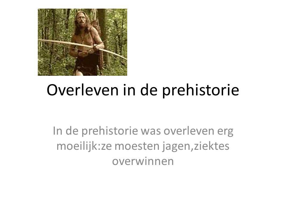 Overleven in de prehistorie In de prehistorie was overleven erg moeilijk:ze moesten jagen,ziektes overwinnen