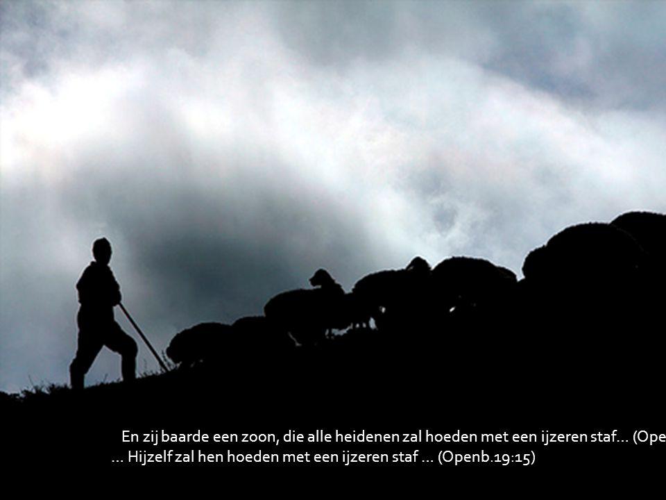 En zij baarde een zoon, die alle heidenen zal hoeden met een ijzeren staf… (Openb.12:5) … Hijzelf zal hen hoeden met een ijzeren staf … (Openb.19:15)