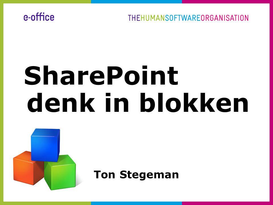 SharePoint denk in blokken Ton Stegeman