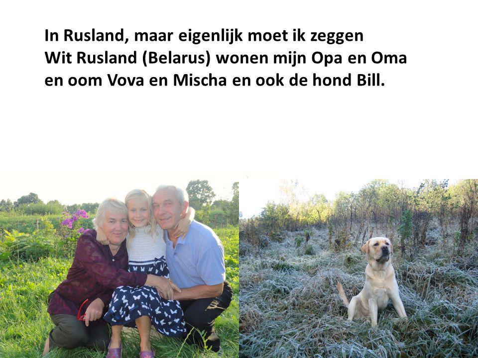 In Rusland, maar eigenlijk moet ik zeggen Wit Rusland (Belarus) wonen mijn Opa en Oma en oom Vova en Mischa en ook de hond Bill.