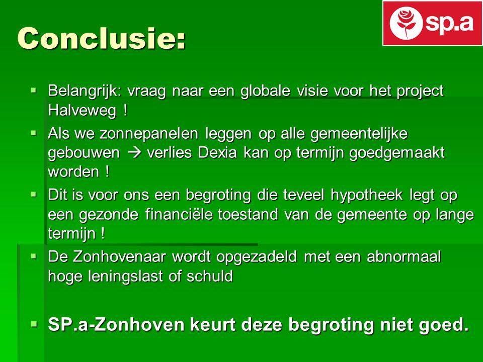Conclusie:  Belangrijk: vraag naar een globale visie voor het project Halveweg .