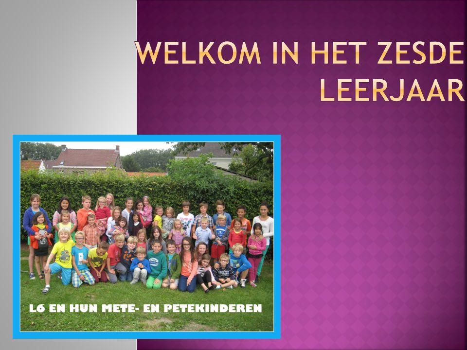  Wiskunde  Nederlands  Frans  W.O.