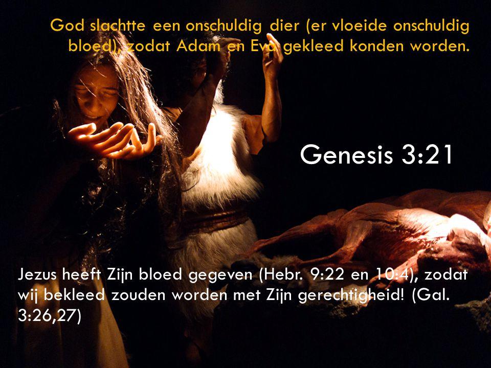 God slachtte een onschuldig dier (er vloeide onschuldig bloed), zodat Adam en Eva gekleed konden worden. Jezus heeft Zijn bloed gegeven (Hebr. 9:22 en