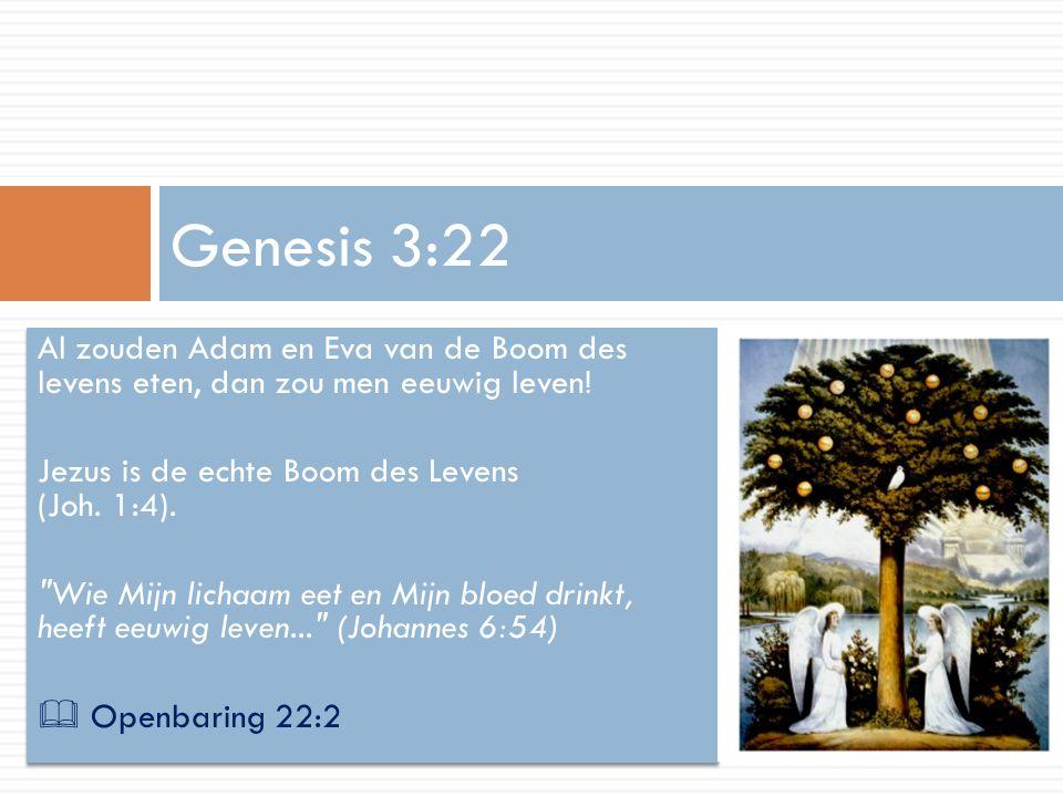 Al zouden Adam en Eva van de Boom des levens eten, dan zou men eeuwig leven! Jezus is de echte Boom des Levens (Joh. 1:4).
